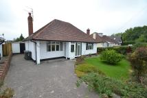 2 bed Detached Bungalow for sale in Pantbach Road, Rhiwbina...