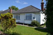 Bungalow to rent in Heol Derlwyn, Rhiwbina...