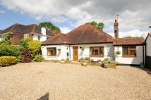 Detached Bungalow for sale in Woodbourne Drive...