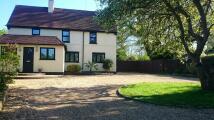 WOODLAND COTTAGE Cottage to rent