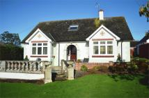 4 bedroom Detached house for sale in 33 Summerfield, Woodbury...