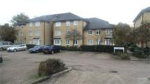 Flat in Malyons Road, Ladywell...