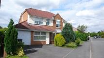 Highclove Lane Detached house to rent