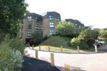 Ground Flat to rent in Chapel Fields...
