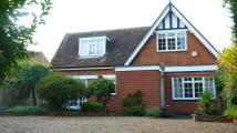 Detached home to rent in Kimbolton Road, Bedford...