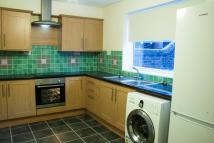 2 bed Terraced house to rent in Sixth Street, Horden...