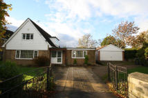 Chalet to rent in Aberford Road, Oulton...