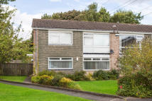 Melness Road Ground Flat to rent
