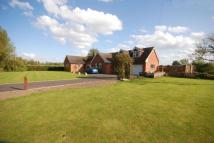 5 bed Bungalow for sale in Kempsey, Worcester...