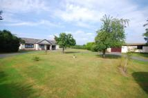 Bungalow for sale in Kempsey, Worcester...