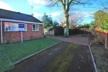Bungalow for sale in Martley, Worcester...