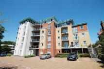 new Flat to rent in Owls Road, Bournemouth