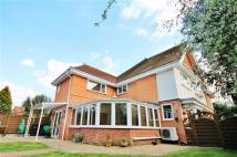 4 bedroom Detached property for sale in Howard Road, Bournemouth