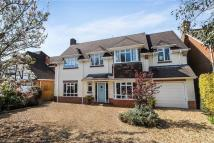 Detached home to rent in Huntly Road, Bournemouth