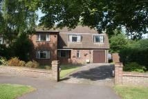 4 bedroom Detached house to rent in Oxted