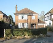 Detached property in Chestnut Avenue...