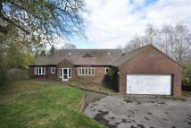 4 bedroom house in The Sycamores, Tutbury...