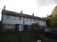 Terraced house to rent in Avenue Gardens, London...