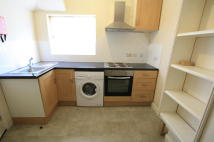 Studio flat in Willoughby Lane, London...