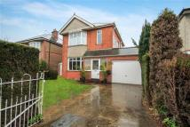 4 bed Detached house to rent in Hambledon Road...