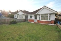 Bungalow to rent in Alder Road, Poole