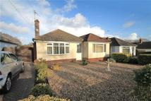 Bungalow for sale in Keighley Avenue, Poole