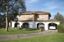 Detached house for sale in Brighstone ...