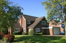5 bed Detached house to rent in Wheeler Avenue, Penn...