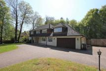 6 bedroom Detached home to rent in Magnolia Dene, Hazlemere...