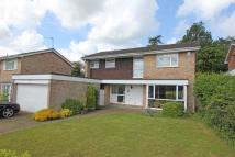 4 bed Detached property to rent in Cedar Grove, Amersham...