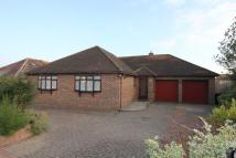 Detached Bungalow to rent in Albion Crescent...