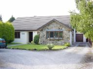 Detached Bungalow in Gorsedd, Flintshire