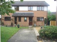 3 bed semi detached house for sale in Llys Degwm, Treuddyn...