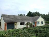 Detached Bungalow for sale in Calcoed Lane, Brynford...