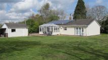 Detached Bungalow for sale in Ty Ni, Hafod Moor...