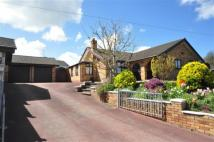 Detached Bungalow for sale in Greenacre, Bagillt...