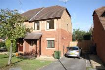 3 bed semi detached house to rent in Lulworth Park...