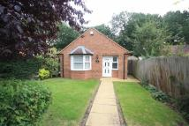 Detached Bungalow to rent in Cashmore Road, Kenilworth