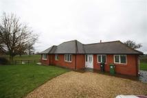 3 bed Detached Bungalow to rent in Camp Farm, Kenilworth...