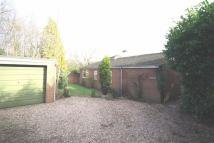 2 bed Detached Bungalow to rent in Coventry Road...
