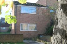 Flat to rent in Pyott Mews, Canterbury...