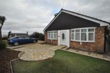 Detached Bungalow to rent in Rhewl