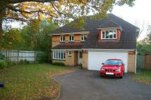 5 bedroom house to rent in York Close, Horton Heath...