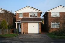property in Chichester Close...