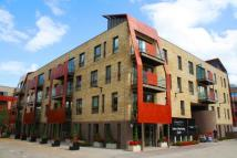 Bluebell House  Apartment to rent