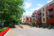 Apartment to rent in Bluebell House ...