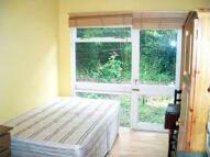 Studio flat to rent in Bath Road, Turnham Green...