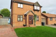 3 bedroom Detached home for sale in Briary close, Brinsworth...