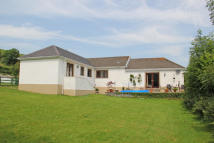 Bungalow for sale in Bronwydd Arms...