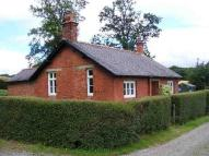 Detached Bungalow in Plas Power Stables...